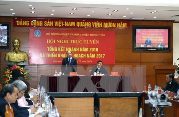 阮春福总理:消除体制性障碍促进农业产业发展 hinh anh 1
