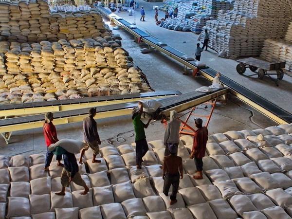 老挝拟扩大对中国的大米出口 hinh anh 1