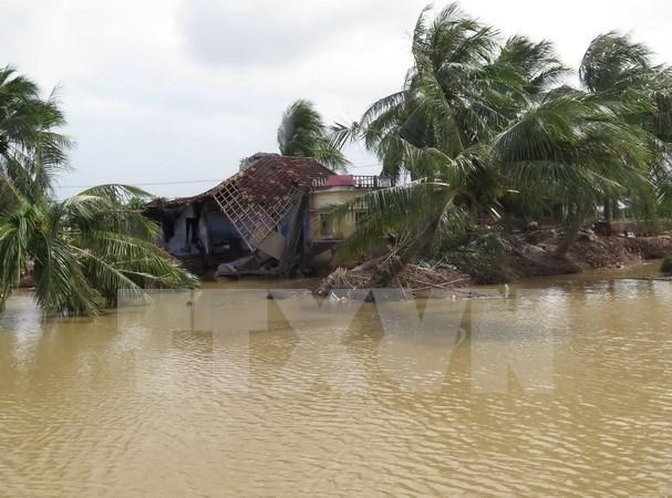 越南外交部为中部以南及西原地区受洪灾影响群众发起募捐 hinh anh 1
