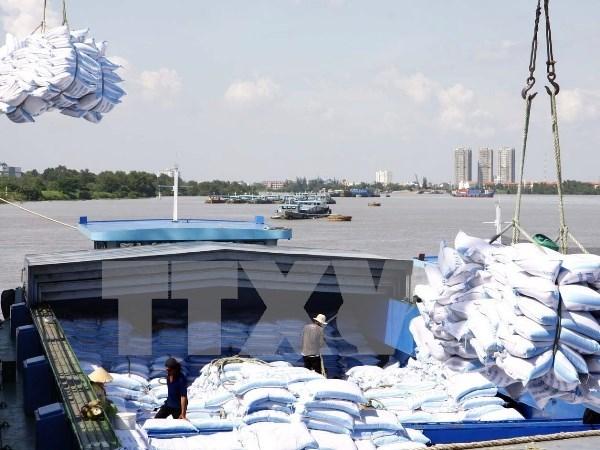 22家越南企业获得向中国出口大米许可 hinh anh 1
