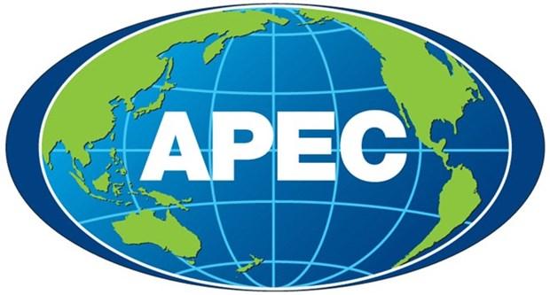2017年越南APEC峰会年的宣传海报设计运动正式发动 hinh anh 1