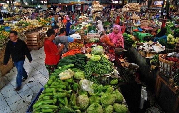 2016年印尼通胀率创8年来新低 hinh anh 1