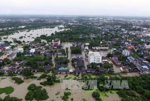 泰国南部强降雨导致洪水泛滥 hinh anh 1