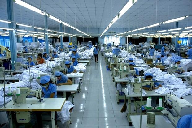 越南产品进军印度市场 hinh anh 1