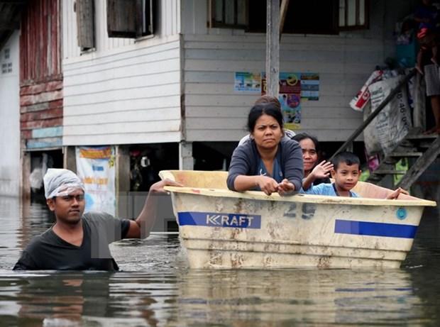泰国南部多地发生洪灾 受灾人口100多万人 hinh anh 1