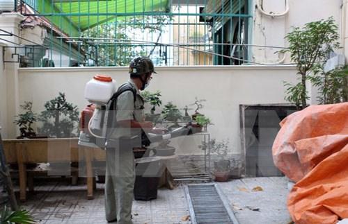 越南卫生部:寨卡病毒迅速蔓延或将成为流行病 hinh anh 1