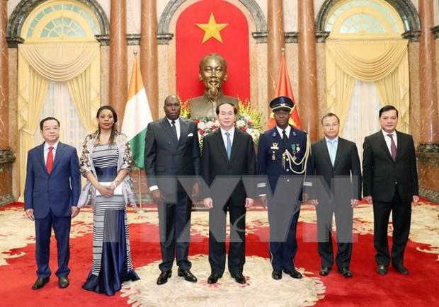 陈大光主席接受五国新任驻越南大使递交国书 hinh anh 1