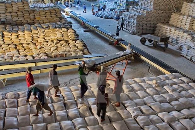 菲律宾从越南和泰国进口5.3万吨大米 hinh anh 1