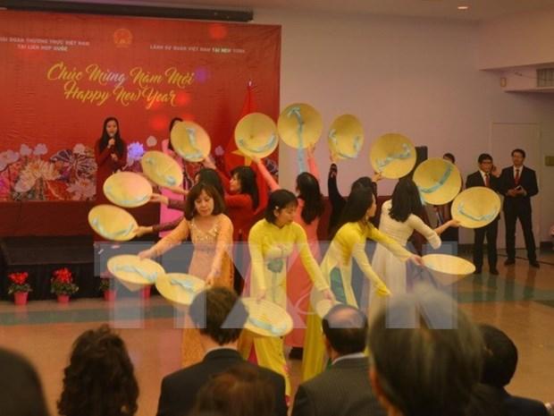 旅外越南人纷纷举行活动喜迎丁酉新年 hinh anh 1
