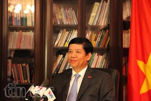 越南驻日本大使阮国强:越日关系全面发展且富有成效 hinh anh 1
