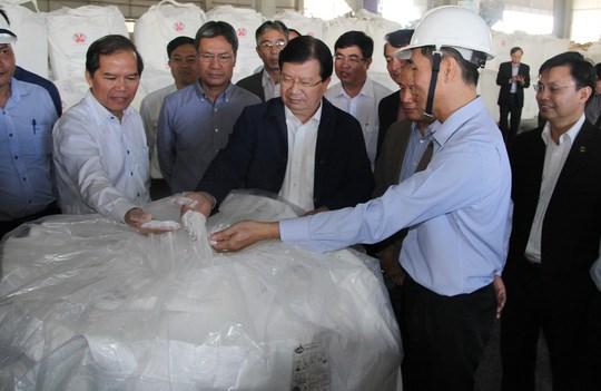 郑廷勇副总理:林同铝矿铝矾土组合项目成为环保典范 hinh anh 1