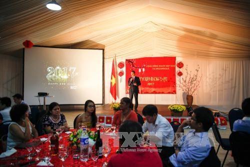 越南驻中国大使馆举行2017丁酉年春节见面会 hinh anh 2