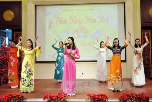 越南驻中国大使馆举行2017丁酉年春节见面会 hinh anh 1