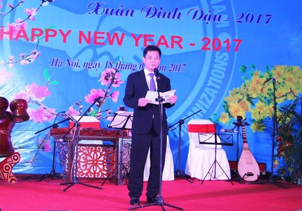 2017新年外国非政府组织友好见面会在河内举行 hinh anh 1