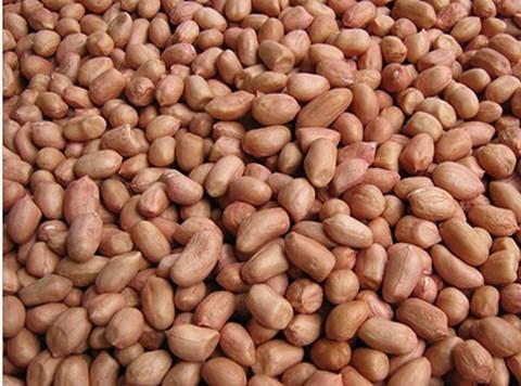 越南暂停进口印尼部分农产品 hinh anh 1