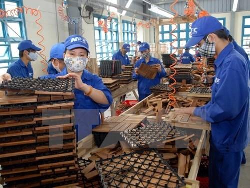 EVFTA 越南和欧盟机会均等 hinh anh 1