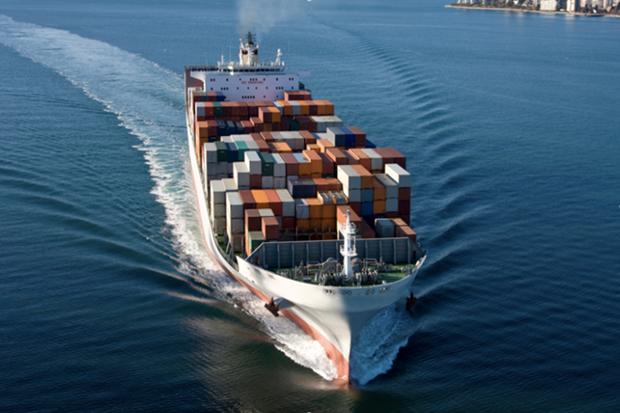 哈萨克斯坦首次采取集装箱整箱包装运输方式对越出口谷物 hinh anh 1