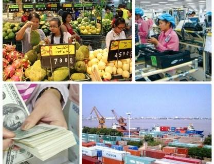 2016年越南经济亮点和2017年展望 hinh anh 1