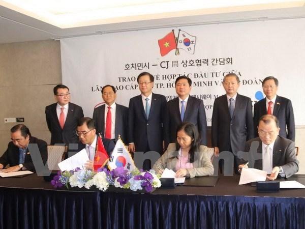 越韩:双边经济合作的成功典范 hinh anh 1