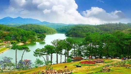 林同省大叻市——游客春游目的地 hinh anh 1