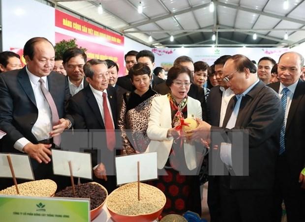 越南政府切实保护高科技农业企业与合作社的知识产权与合法利益 hinh anh 1