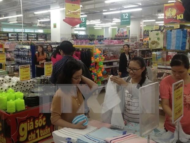越南发展零售市场 hinh anh 1