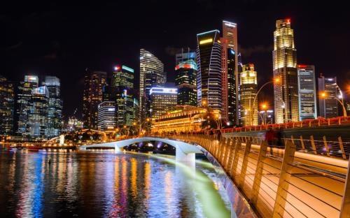 2017年新加坡投资活动或将保持稳定 hinh anh 1