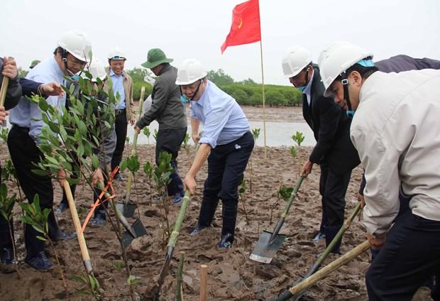 世界湿地日:越南努力做好湿地保护工作 hinh anh 1