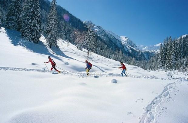 越南首次参加亚洲冬季运动会 hinh anh 1