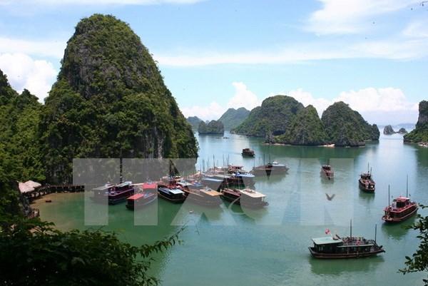 一名外国游客在越南下龙湾失踪 已找到其尸体 hinh anh 1