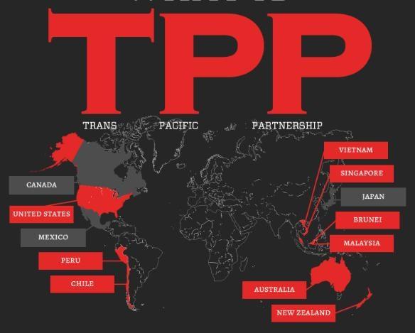 新加坡贸工部:没有美国的TPP仍是一条可行的路径 hinh anh 1