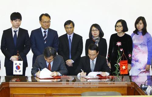 越通社与韩联社加强合作交换信息 hinh anh 2