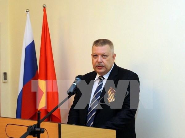 2017年越南与俄罗斯关系将继续蓬勃发展 hinh anh 1