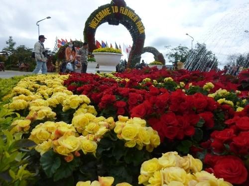 2017年大叻春季花卉节吸引10万人次前来参观游览 hinh anh 1