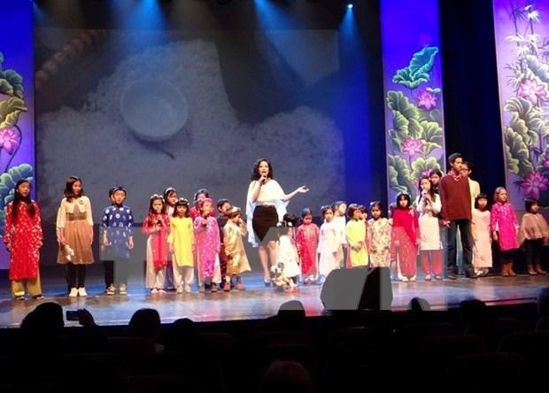 旅居比利时越南侨胞举行喜迎2017丁酉鸡年新春活动 hinh anh 1