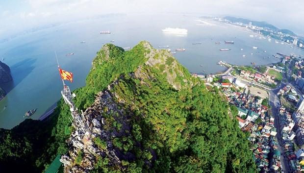 下龙市旅游业:扬帆起航 向大海前行 hinh anh 1