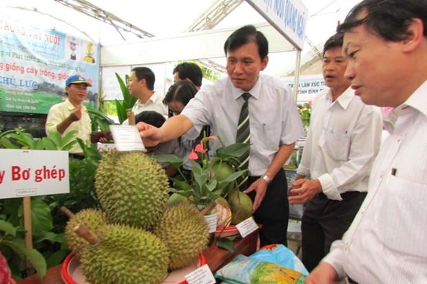 九龙江三角洲国际农业展即将在芹苴市举行 hinh anh 1
