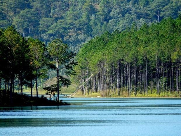 越南林同省大叻市泉林湖被公认为国家级风景区 hinh anh 1