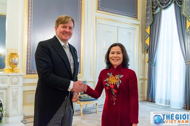 荷兰十分重视发展与越南的关系 hinh anh 1