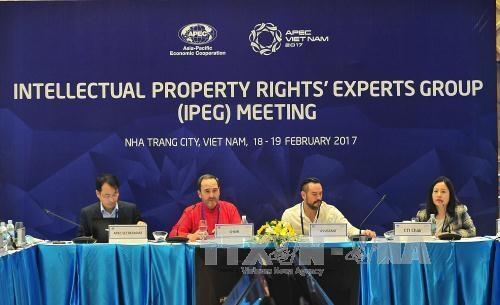 2017年APEC峰会:APEC知识产权专家组第44次会议在庆和省召开 hinh anh 1