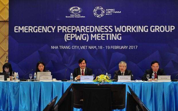 2017年越南APEC峰会: 第十一次APEC备灾工作组会议在芽庄市举行 hinh anh 1