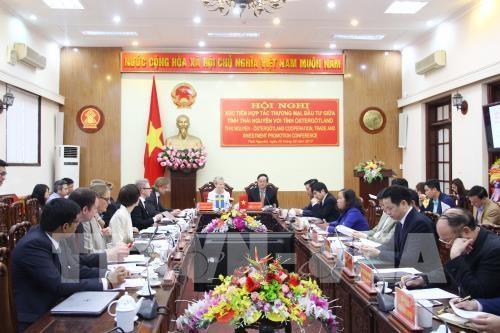 越南太原省与瑞典东约特兰省加强投资合作 hinh anh 1