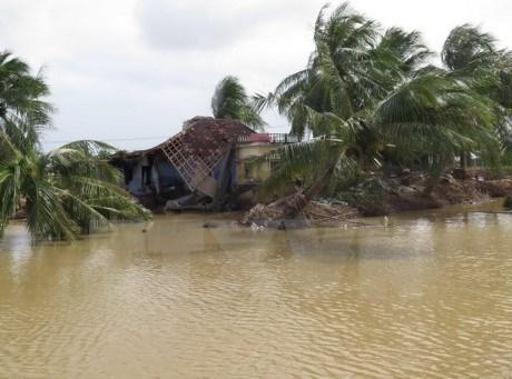 "APEC 2017:""应对自然灾害风险的金融与保险政策""研讨会召开 hinh anh 1"