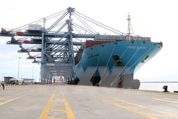 越南国际盖梅海港迎接有史以来最大集装箱船 hinh anh 1