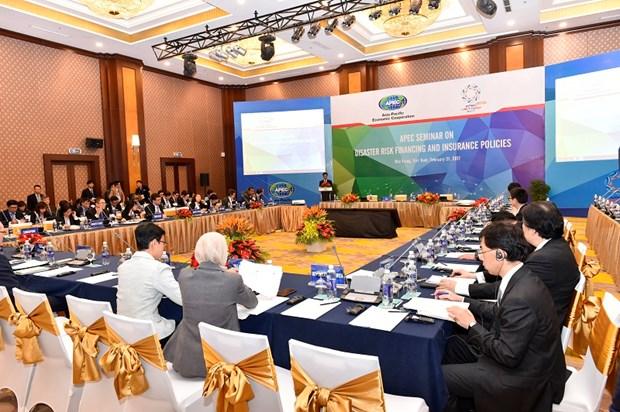 2017年越南APEC峰会:保险是减轻国家财政负担的有效途径 hinh anh 1