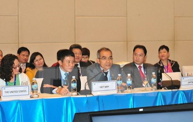 APEC成员努力实现林业可持续管理和促进木材贸易可持续发展 hinh anh 1