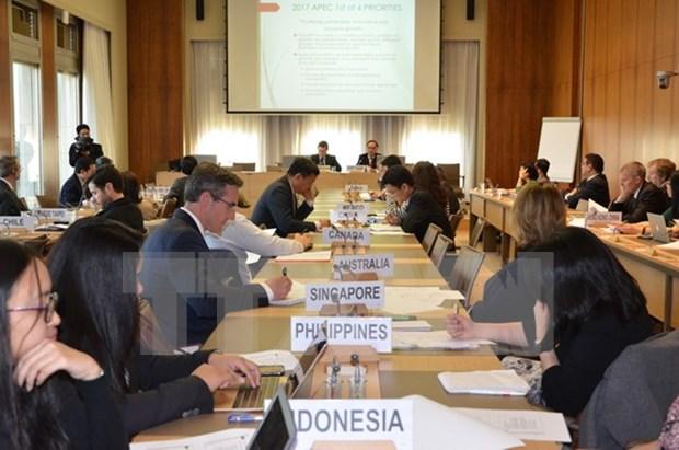 APEC成员经济体支持2017年越南APEC峰会的优先事项 hinh anh 1