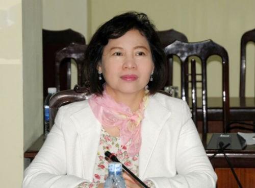 越南政府总理要求澄清工商部副部长胡氏金钗财产相关信息 hinh anh 1