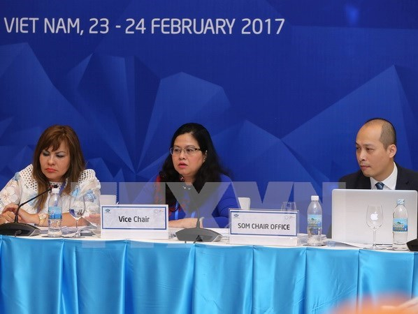 APEC 卫生工作组会议:加强医疗卫生系统建设 走向全民健康覆盖 hinh anh 1