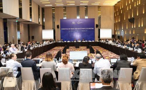 2017年越南APEC峰会:越南企业贸易与投资促进机会 hinh anh 1